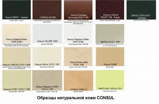 Consul_kozha.jpg